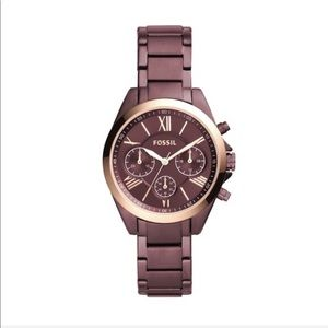 Fossil Courier Midsize Wine Stainless Steel Watch